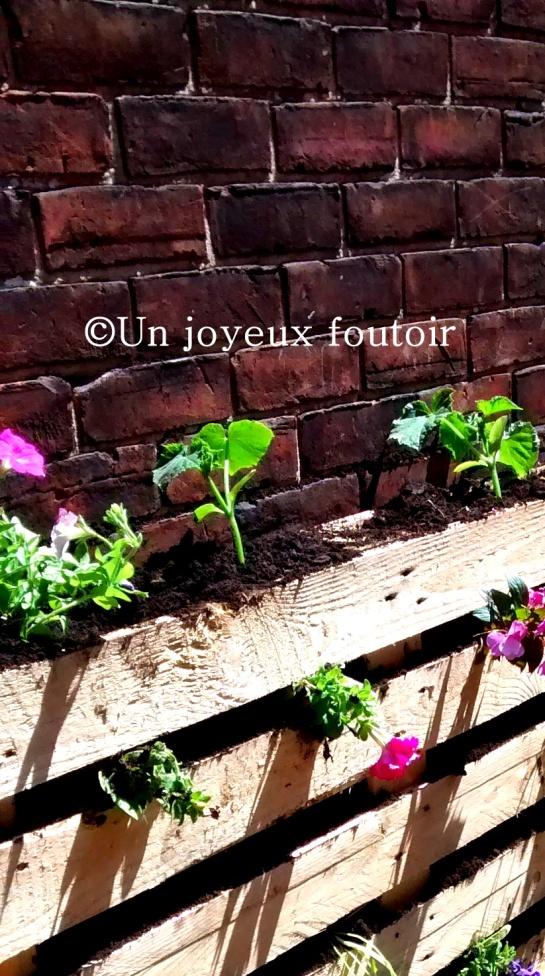 mur végétal ujf-04